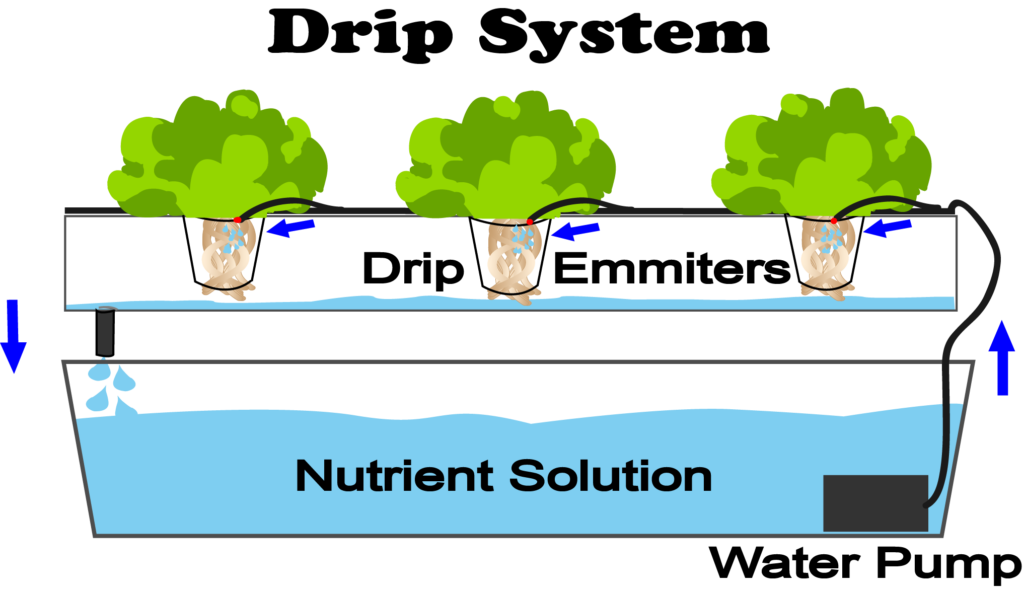 What Is Drip Hydroponics Nosoilsolutions