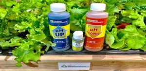Learn 3 ways of measuring the pH of your nutrient solution